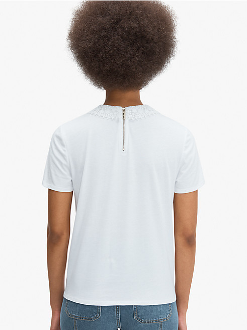 レース カラー Tシャツ